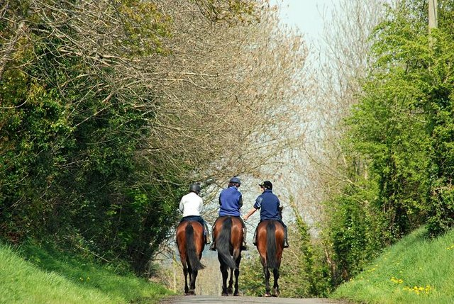 Horse_riding_near_the_Corbet_-_geograph.org.uk_-_1271844